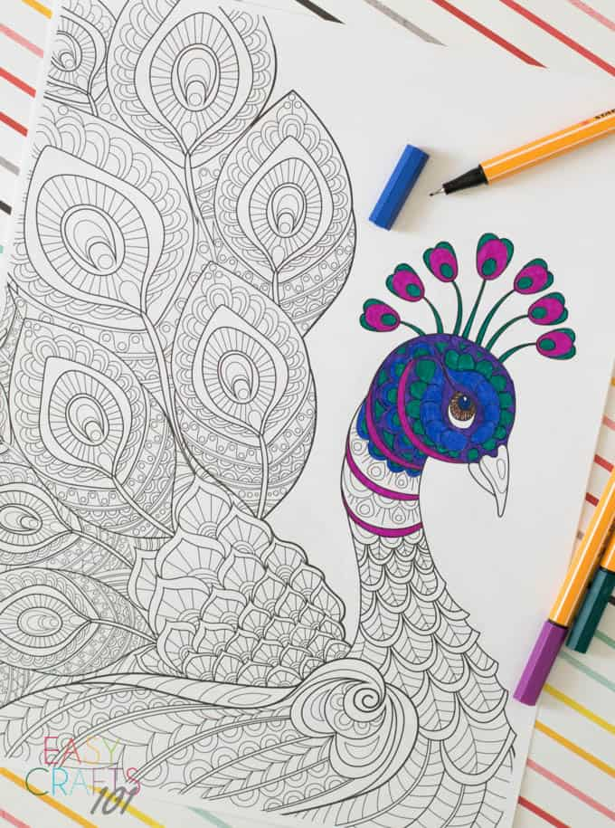 Free Peacock Adult Coloring Page