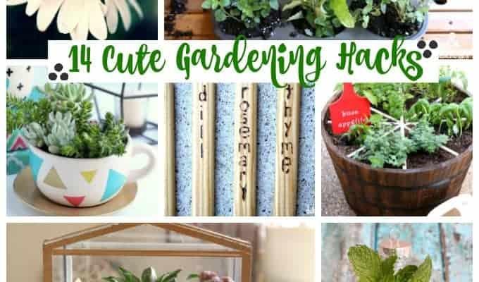 14 cute gardening hacks