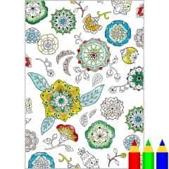 Coloring Page: Patterns/Abstract (Flower Mandala 02)